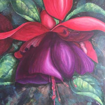 large fuchsia in acrylic