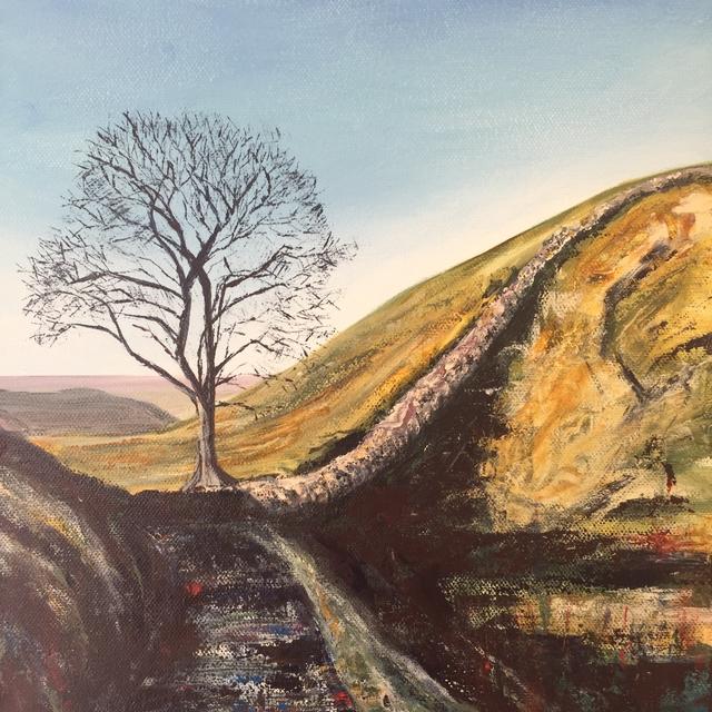 Sycamore_gap_Hadrian's_wall_northumberland